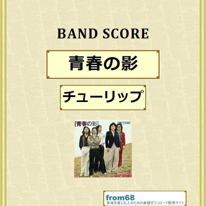 チューリップ (バンド)の画像 p1_14
