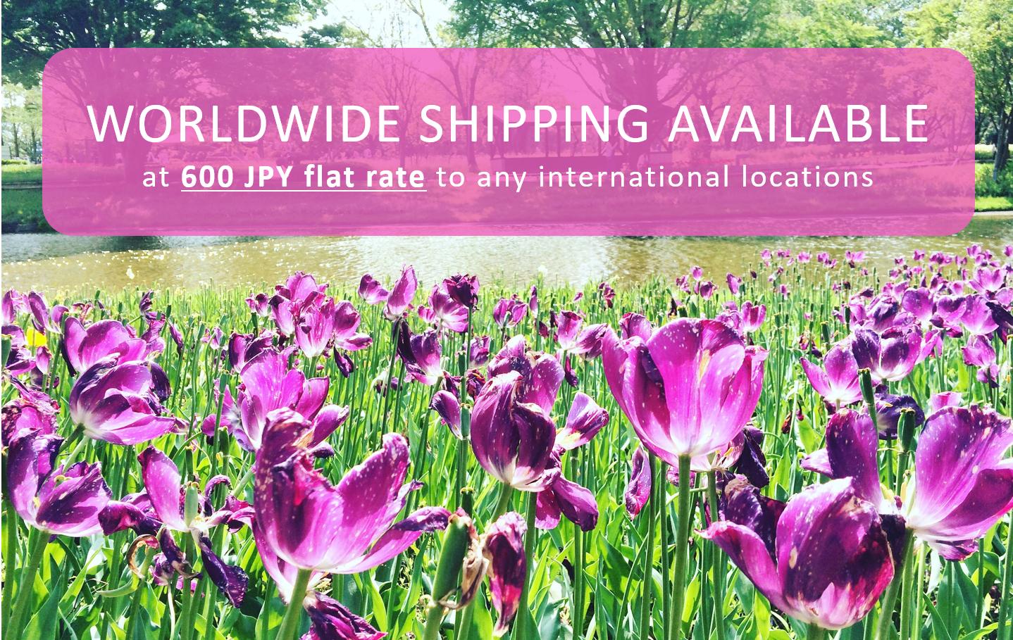 Shipment info