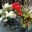 ワイヤーバスケット 置いても架けてもお花も自由