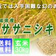【新米予約販売開始】平成28年度産 宮城県産ササニシキ「玄米30Kg」業務用