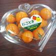 贈答&ギフト用「にこトマト:ミニトマト(黄)150gパック/4個入り」