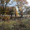 SHINTA's PIANO - Fairies of the path