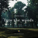 SHINTA's PIANO - Into the woods