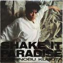 Toshinobu Kubota – Shake It Paradise