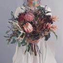 【レンタル】big bouquet[proteus]
