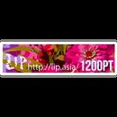 ★Lip(リップ) ptチケット 1200pt // http://lip.asia/