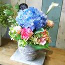 7500円(税抜) 母の日紫陽花アレンジメント