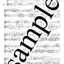 【Flute Duet】Someday(ノートルダムの鐘)
