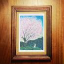 ポストカード 桜の香りの夕暮れに