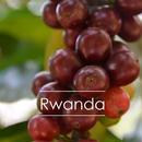 ルワンダ ブルメラ 200g