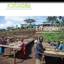エチオピア コチェレ デボ 100g