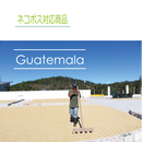 グァテマラ ラ・トラベシア農園 100g