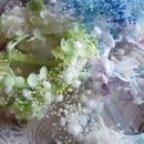 プリザーブドフラワー かすみそうとあじさいのリストブーケ ヘアコサージュ、チョーカー、花かんむりにも
