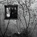 JULIE's Photo Monochrome-25