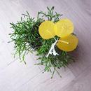 hiroko watanabe | お花ブローチ