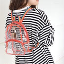 DICKIES MINI CLEAR BACKPACK RAINBOW / ディッキーズ ミニ クリア バックパック  レインボー