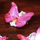 GOTHIC HOLIC/ゴシックホリック 舞い踊る喋々クリップ【桜祭り限定アイテム】
