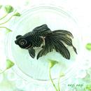 ねぎねぎ/NEGINEGI 金魚(出目金)*ブローチ