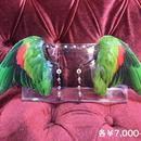 魔界ノ風鷹/マカイノカゼタカ インコの翼イヤーフック緑