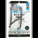 パーソナルエクササイズバンド レッグ&ヒップ 1個入 DVD付