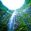 rainy falls