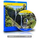 4Kカメラ映像【Healing Blue ヒーリングブルー】関東の滝 - 夏 - 1 〈動画約60分〉ポストカード10種付属