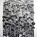 「赤頭巾ちゃん」1928年制作 リトグラフ   送料無料