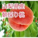 桃 大箱(化粧箱・10~11玉)送料無料