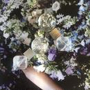 耳飾りWater flower =halfcube M 244 =