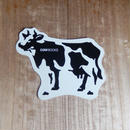 COW BOOKS Cow Postcard