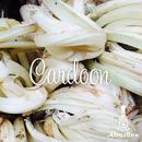 茎が美味しいアーティーチョーク/カルドンの種
