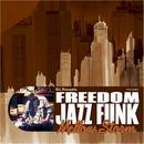 """V.A (Mixed By D.L) - D.L Presents FREEDOM JAZZ FUNK """"Mellow Storm"""""""