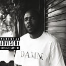 KENDRICK LAMAR / DAMN. COLLECTORS EDITION [2LP]