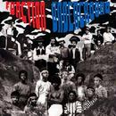 FUNCTION UNDERGROUND BLACK AND BROWN AMERICAN ROCK SOUND 1969-1974 (LP)