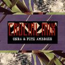 Onra & Fitz Ambro$e / Crucial Mix [MIX CD]