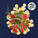 呂布カルマ / The Cool Core [CD]