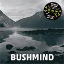 BUSHMIND / 2013 DTW MIX [MIX CDR]