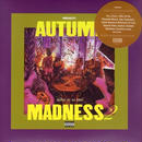 DJ KIYO / AUTUMN MADNESS 2 [MIX CD]