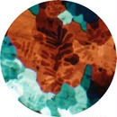 Books/Sour Grapes EP [12INCH]