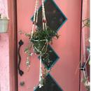Vintage Macrame Plant Hanger