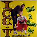 Ice T - What Ya Wanna Do