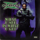 Xzibit - What U See Is What U Get