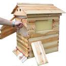 【送料無料!】組み立て式! 蜂蜜がでてくるミツバチのお家♪ 養蜂 木製 蜂の巣 ハニーフローハイブ 7ピースフレーム 養蜂【新品】