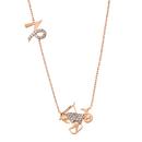 Rose Gold 925 Zodiac NecklaceCapricorn /やぎ座