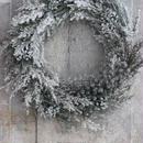 Snow dayリース