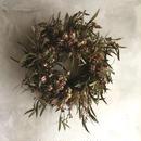 Dried Nigella & Eucalyptus Albida Wreath (ニゲラとユーカリ アルビダのドライリース)