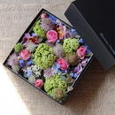 Flower Box  multi-color  (マルチカラー)  L size