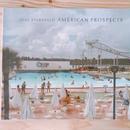 JOEL STANFELD    AMERICAN PROSPECTS