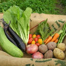 少量野菜セット