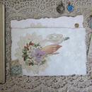 手に停まった白鳩のクロモスポストカード